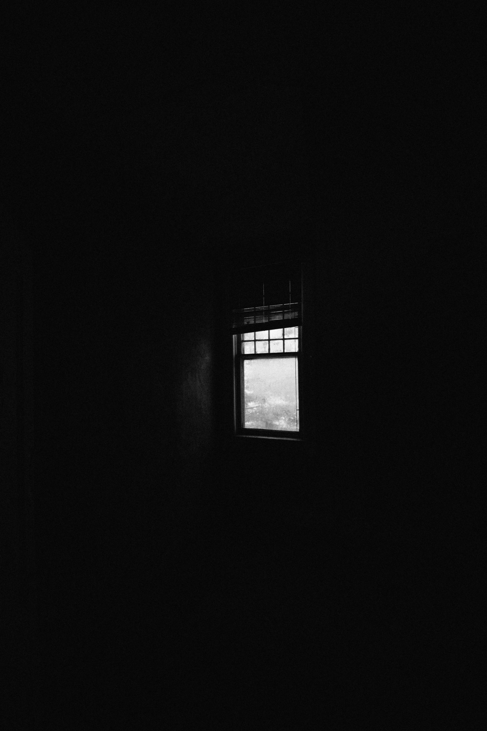 shadows in the window